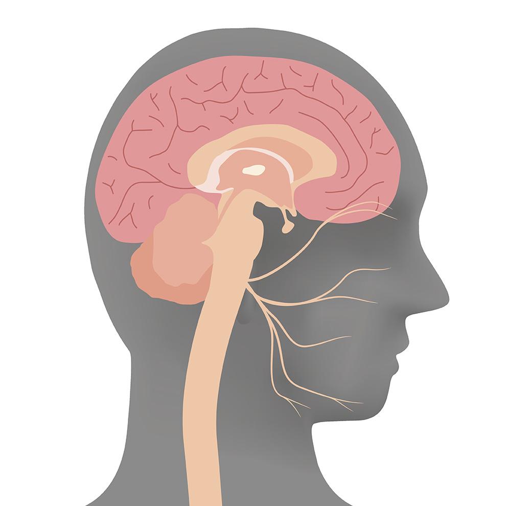 Engourdissement dans la bouche (paresthésie buccale) | Bücco